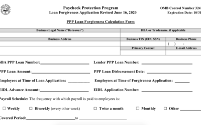 PPP Loan Forgiveness – How to Apply